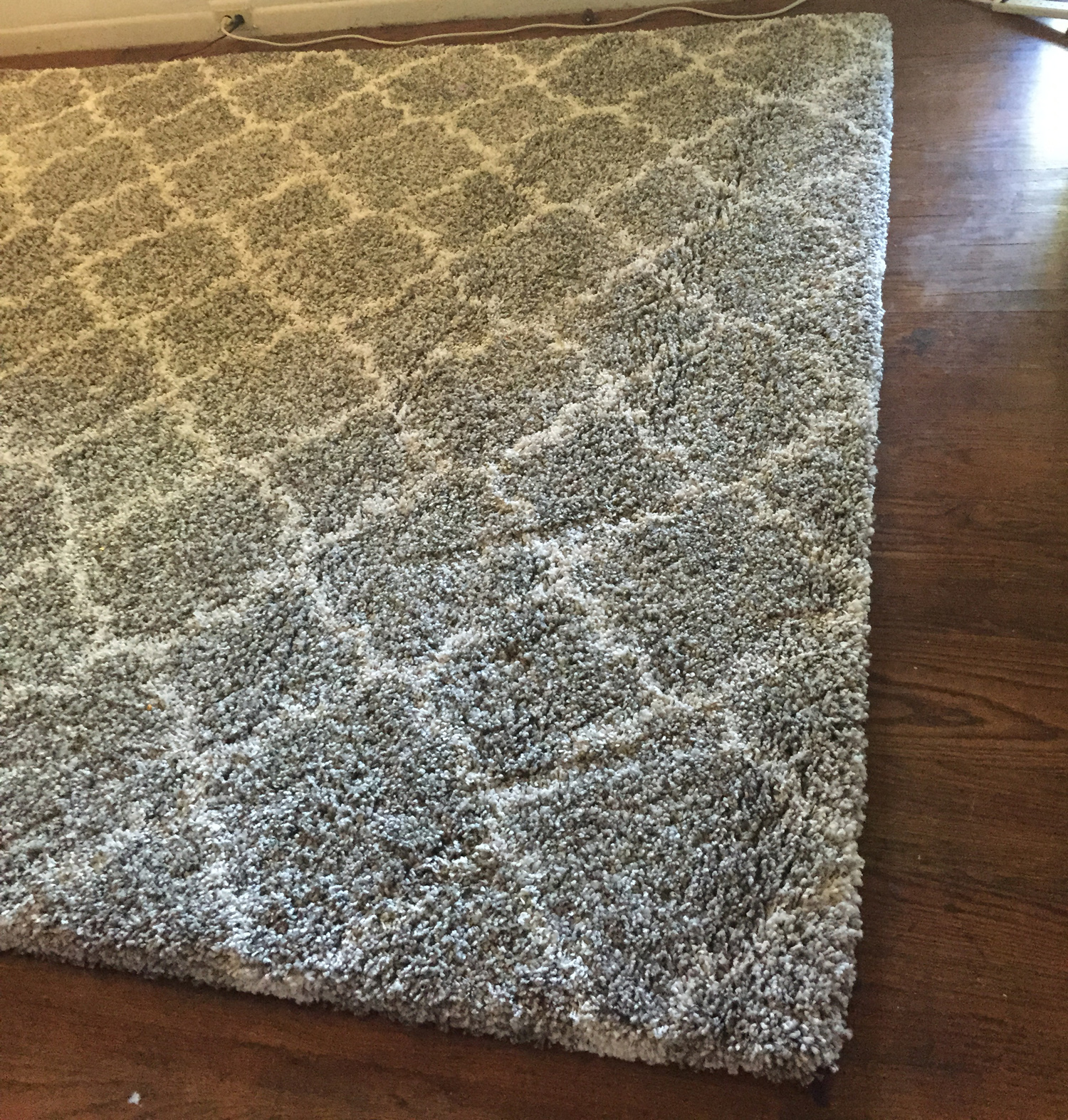 how to clean dog urine from carpet padding
