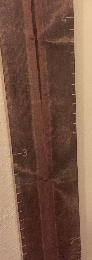 Growth Chart Line Spacing- JLM Designs